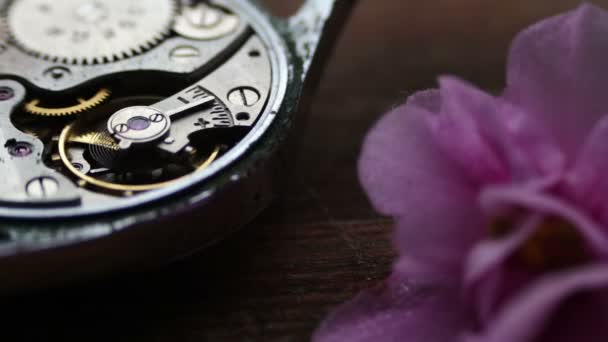 Old Stopwatch Mechanism Next to a gently pink violet flower