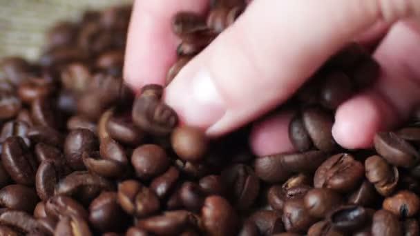 Žena hnědé tauch kávová zrna smyčka video