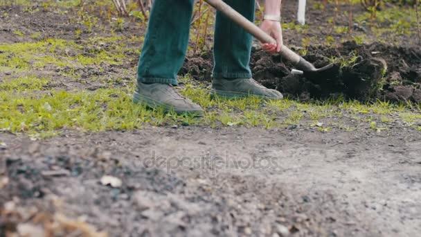 Muž v zahradě s lopatou kopat díry v zemi