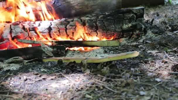 Pěkný pohled hořící oheň jiskry a červené plameny detailní zobrazení. Hořící dřevo v krbu