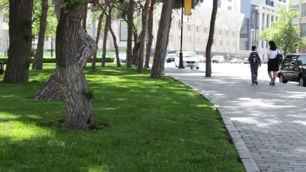 9. května 2017, Baku, Ázerbajdžán: krásný hladký a zelený trávník park v Baku.Fresh zelené trávě shot