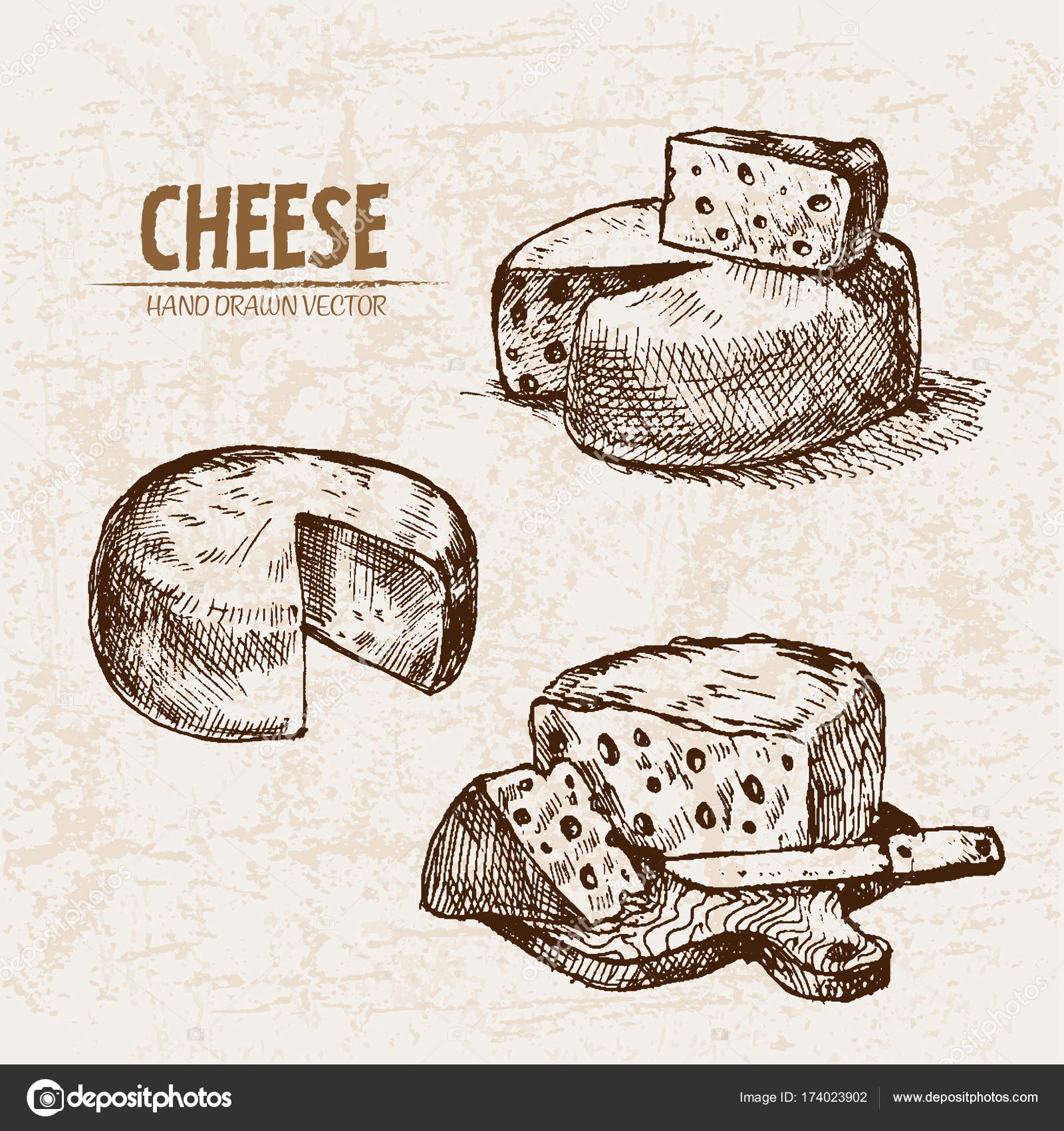 Digital vector detailed line art sliced cheese with holes hand drawn retro illustration collection set thin artistic pencil outline