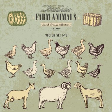 Farm animals vintage hand drawn collection