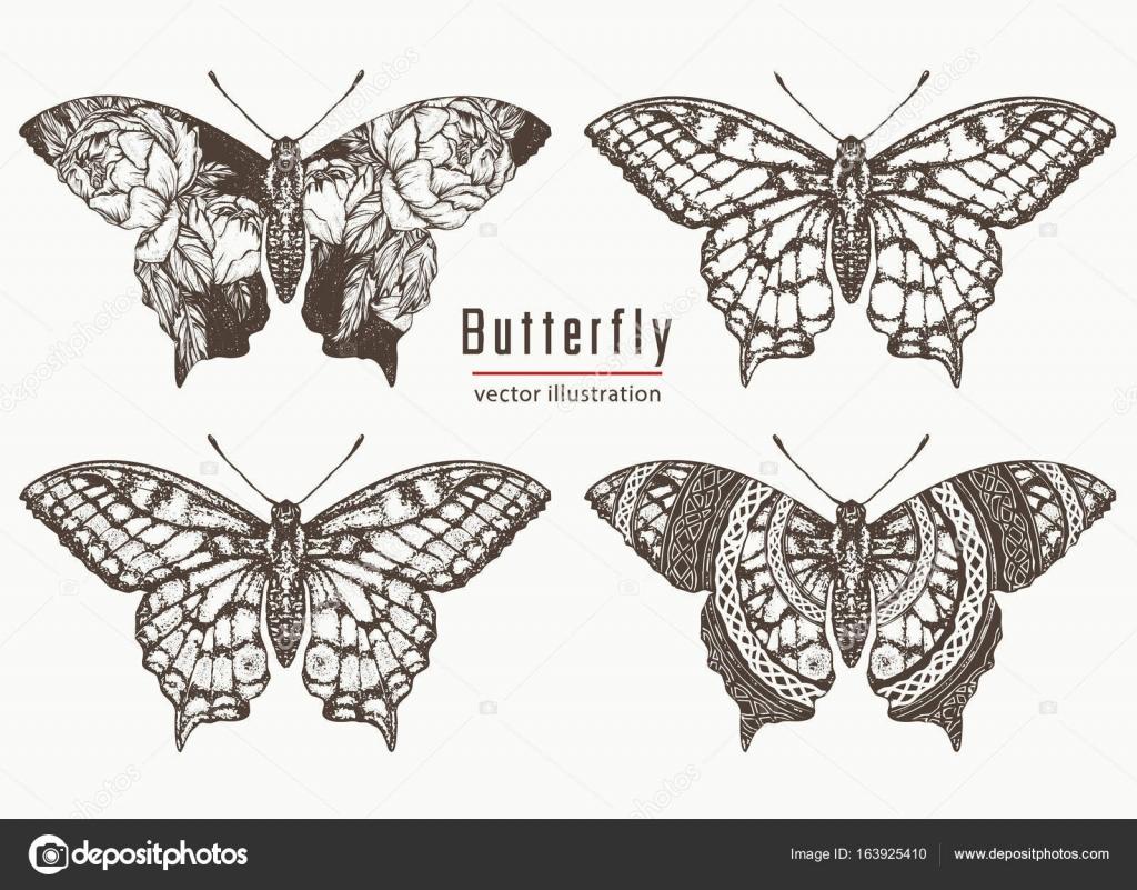 Motyl Ręcznie Rysowane Kolekcji Tatuaż Motyl Realistyczne