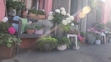 View of florists shop. Outdoor view of florists shop, florists decoration on street.