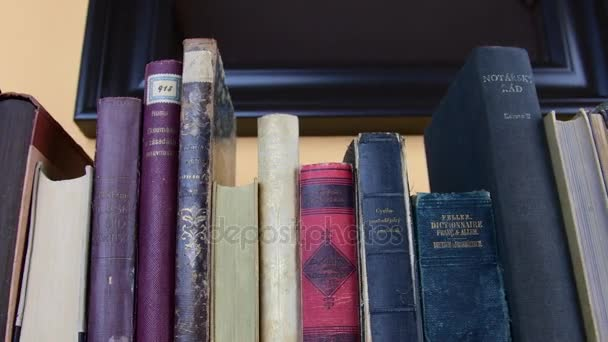 Vintage books. View of row of old books. Books in Czecch and German language.
