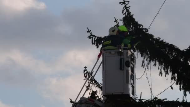 Obrázek ukazuje, že hasiči připojit světýlka na velké venkovní vánoční stromek