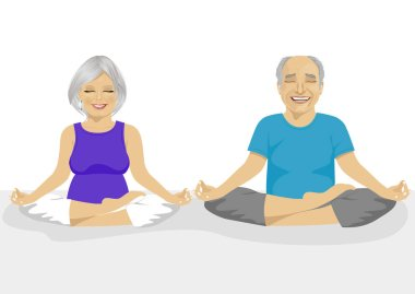 Senior couple doing yoga. Body and mind in harmony with nature.