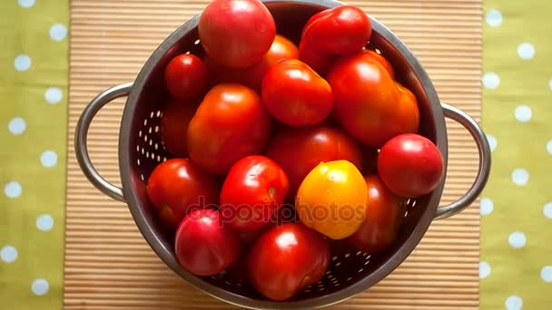 freshly picked organic garden vegetables. A basket with tomatoes