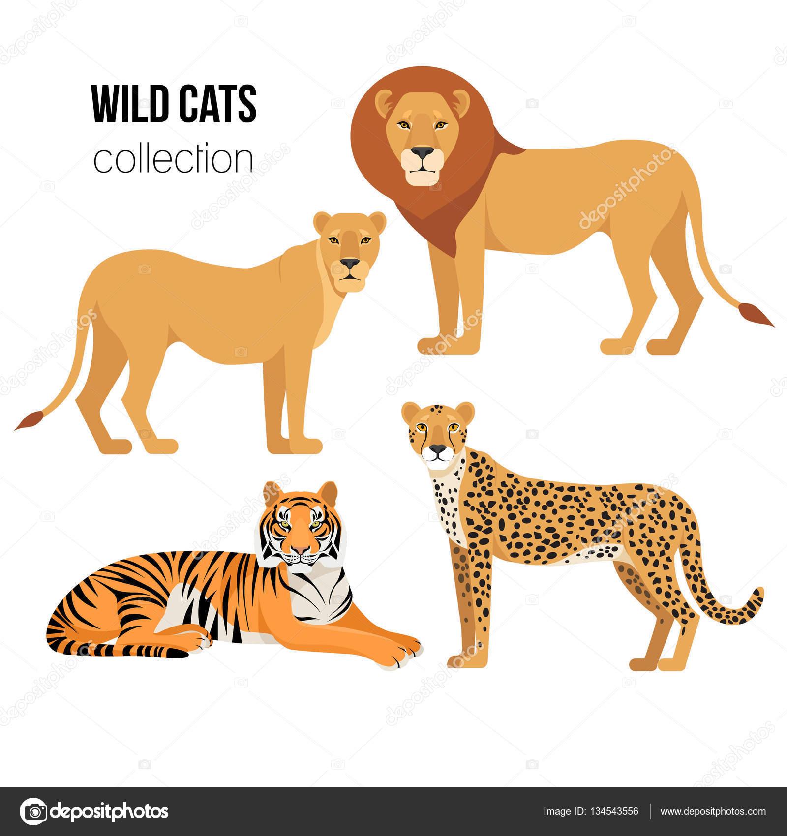 predatory animals drawings