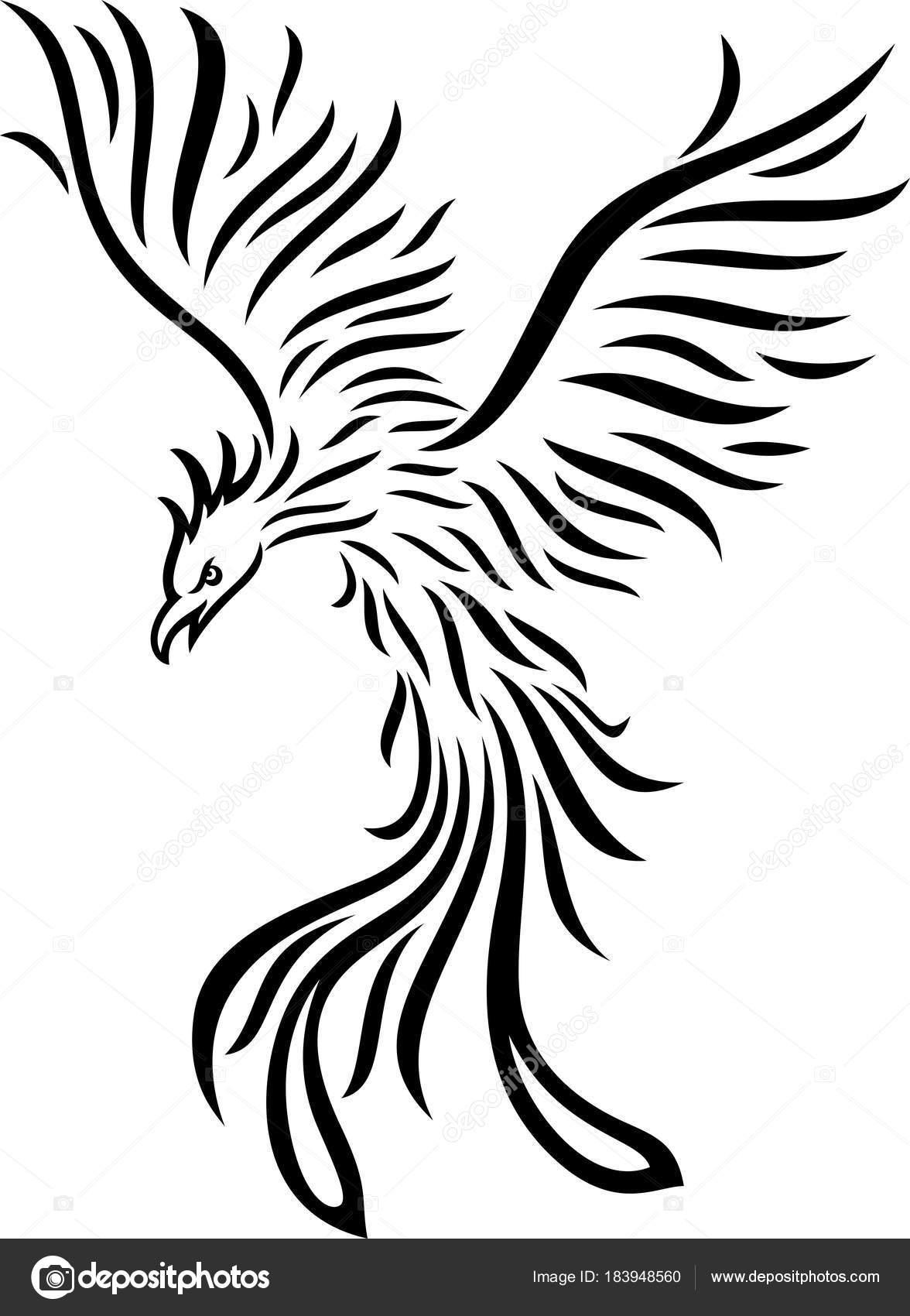 Illustration Vectorielle Tatouage Phoenix Isolé Sur Fond