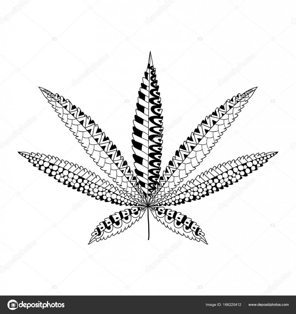 Hoja De Marihuana Para Colorear Hoja De Cannabis Cáñamo En