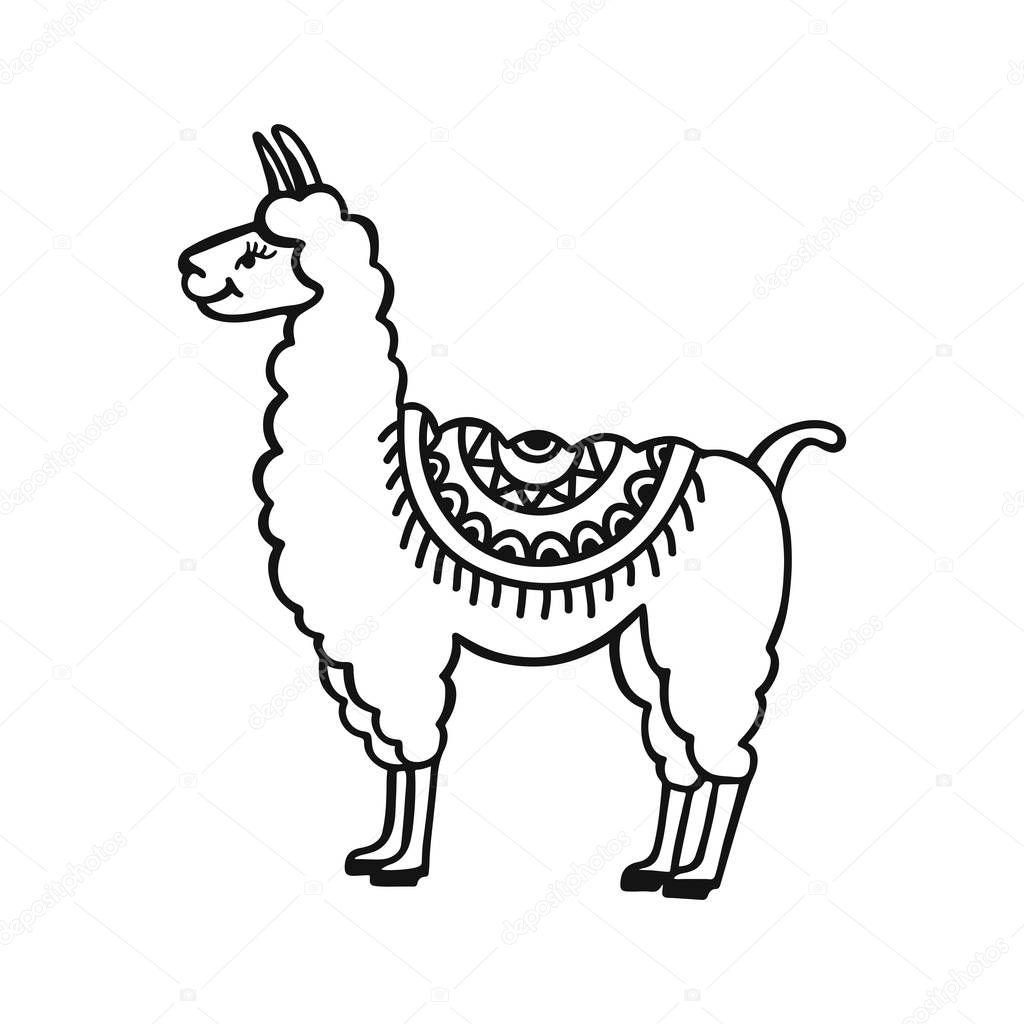 Hand drawn cute little lama. Doodle cartoon vector illustration