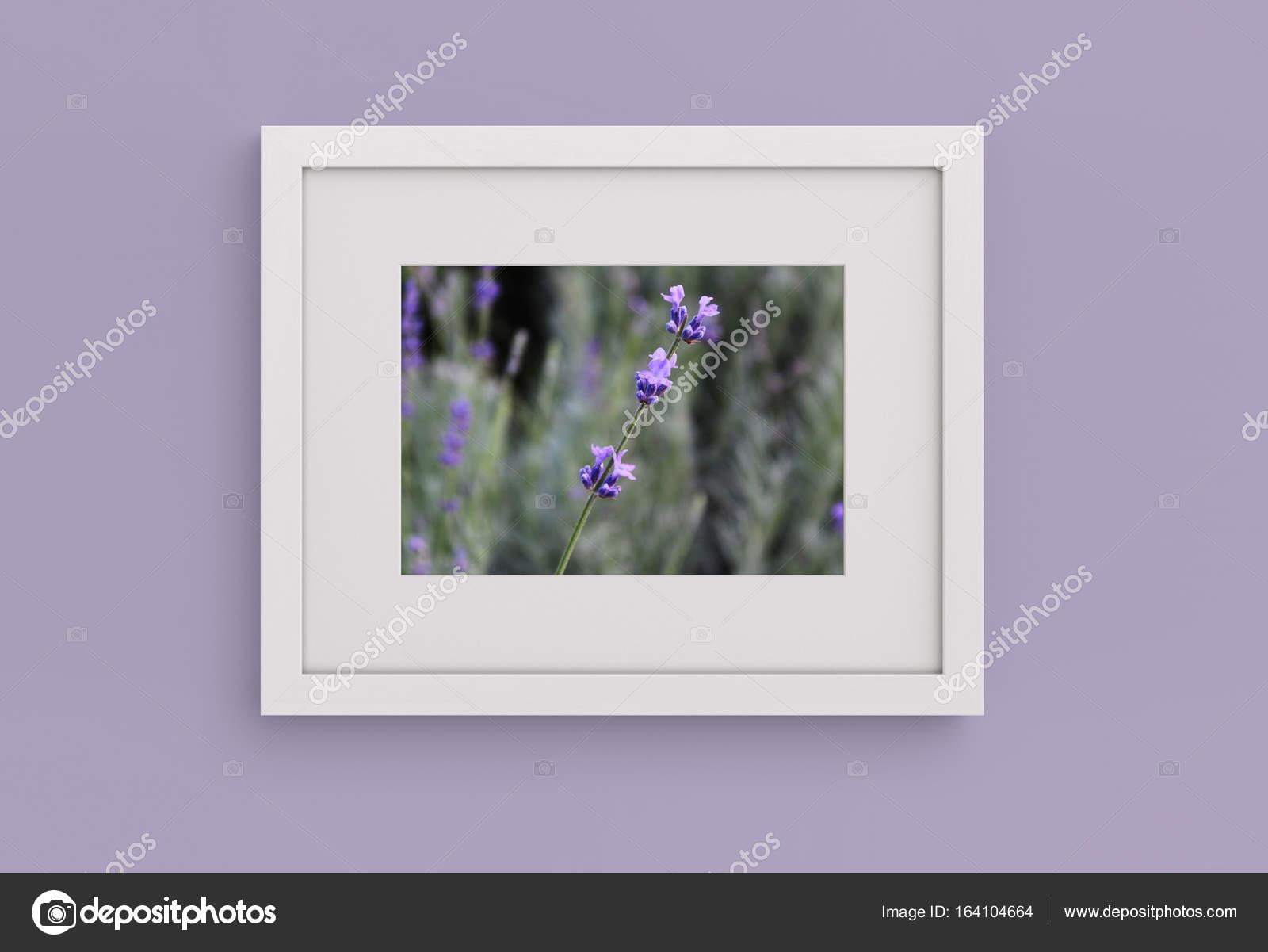 Lavendel Bilderrahmen an der Wand. Mock-up — Stockfoto ...