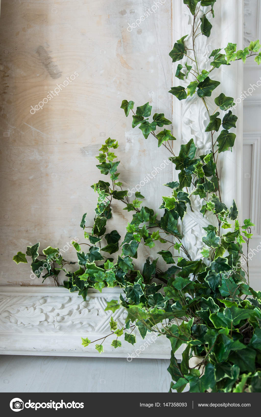 Weiße Kunst Stuck Gips Wand mit einem Grean Loach Zweig drauf ...