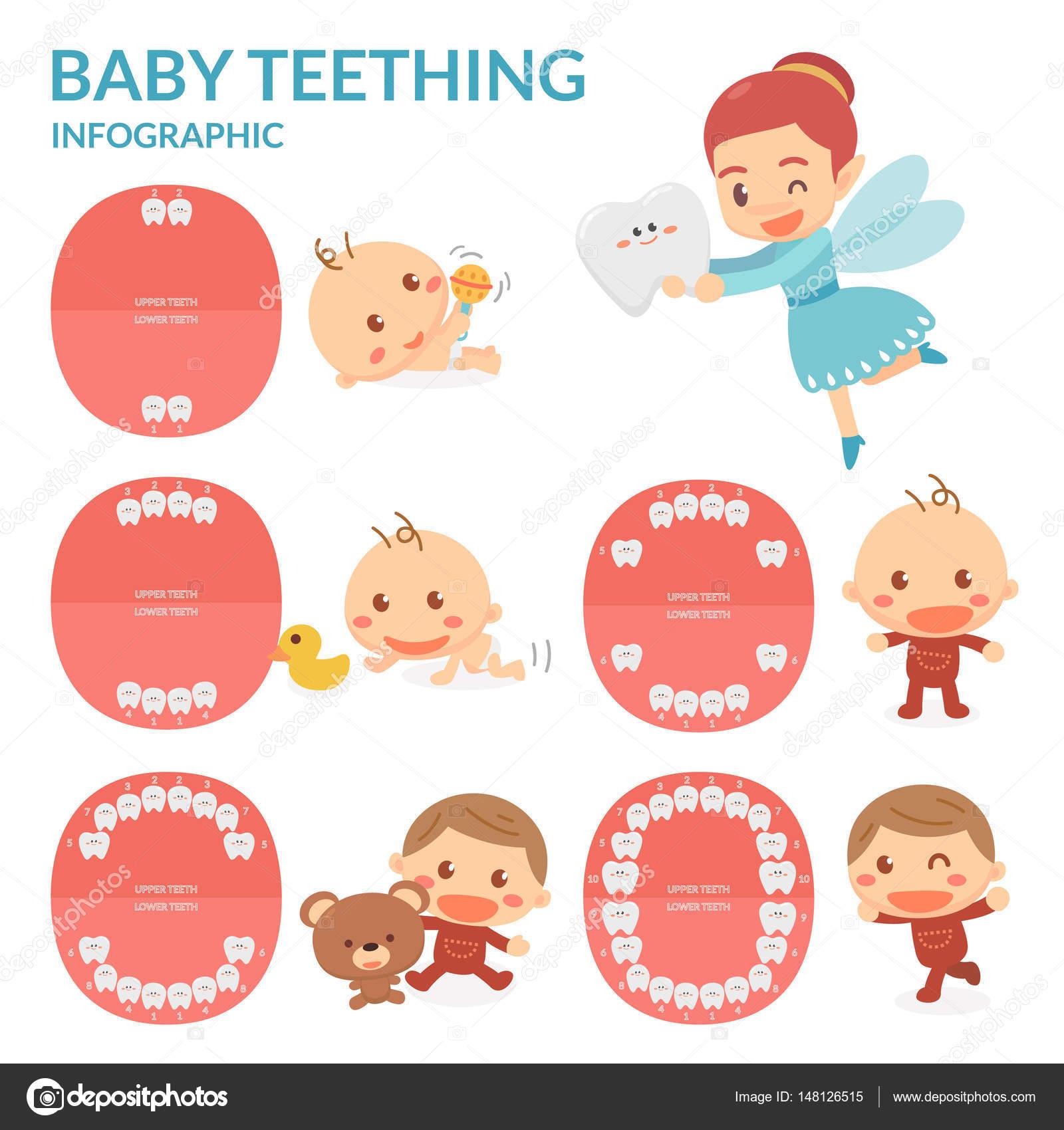 Baby Zahnen. Zahnfee. Zeit der Eruption und Vergießen des Babys ...