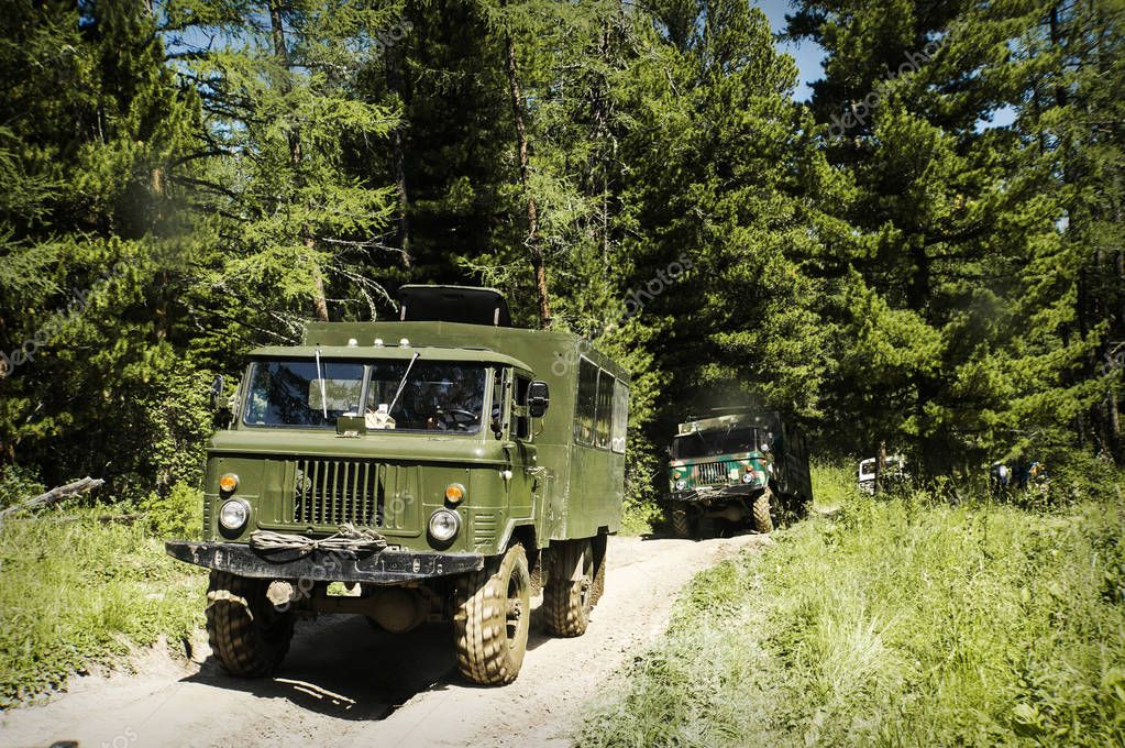 Military vehicle in the forest,