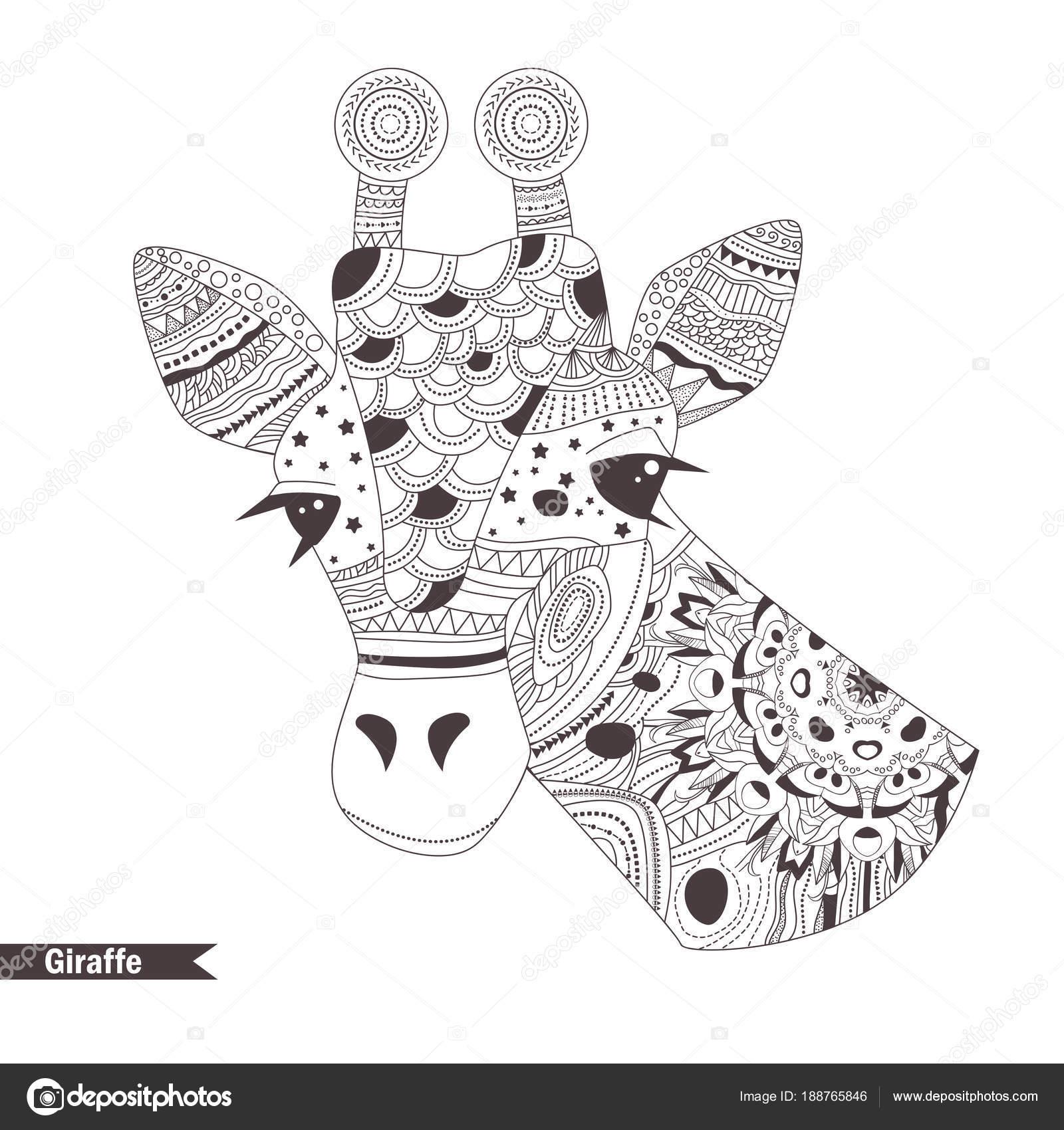 жираф книжка раскраска векторное изображение Annaviolet
