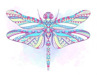 Patterned colorful dragonfly