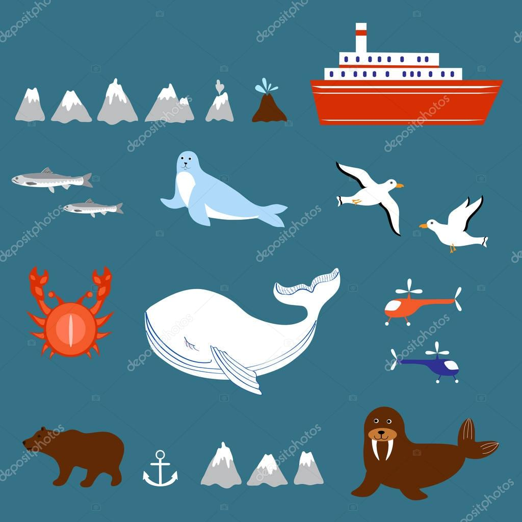 Marine set seagulls, salmon, whale, seal, walrus, ship, volcano, geyser, helicopter, crab isolated on white background, decorative vector sea colorful elements for design advertising, greeting cards