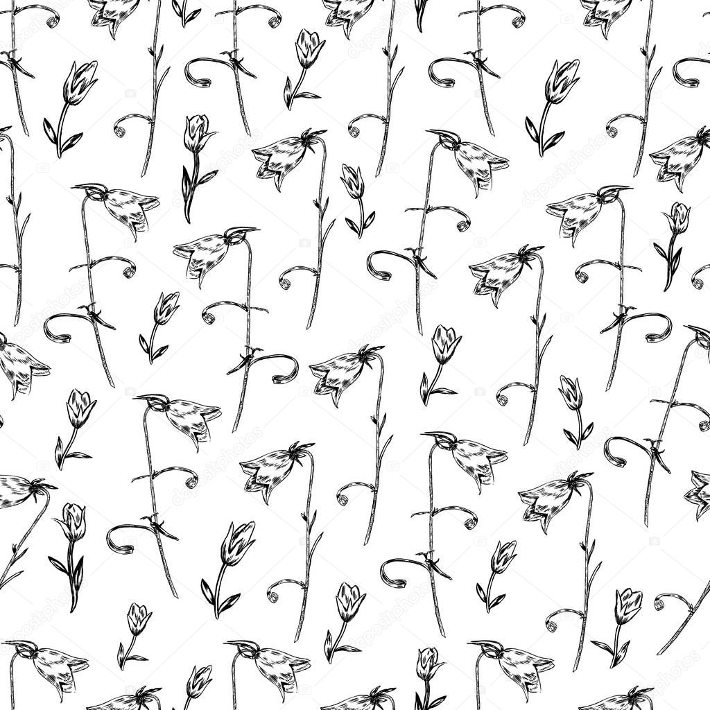 Seamless floral vector pattern, Bell flower sketch hand drawn isolated on white background for card, package cosmetic, tea, coffee, magazines, web site, restaurant menu, decorative wallpaper, textile