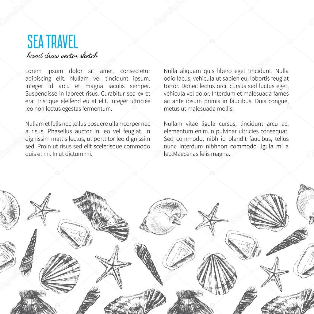 Seashells hand drawn for layout design
