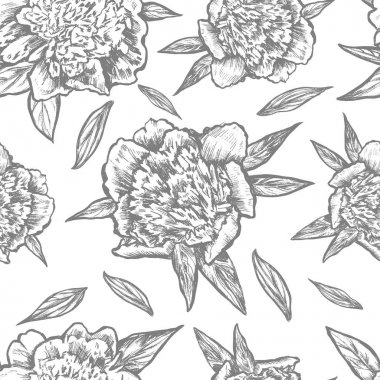 Seamless floral pattern, Graphic peony flower, bud, leaves, petals hand drawn vector illustration isolated on white background for beauty salon, wedding card, greeting invite, florist shop, wallpaper
