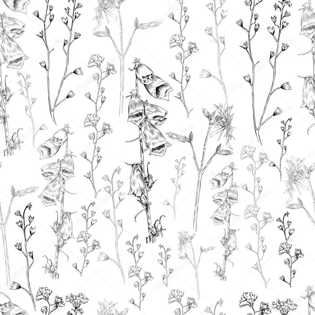 Wild flower vector engraving sketch hand drawn isolated on white, Seamless floral pattern for greeting card, package cosmetic, tea, wedding invitation, restaurant menu, wallpaper, decorative texture