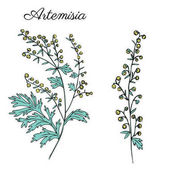 Fotografie -handgemalte florale Satz