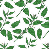 Fotografie Seamless floral pattern, Nettle wild field flower isolated on white background, hand drawn sketch vector doodle, colorful illustration Urtica dioica for design package tea, cosmetic, natural medicine