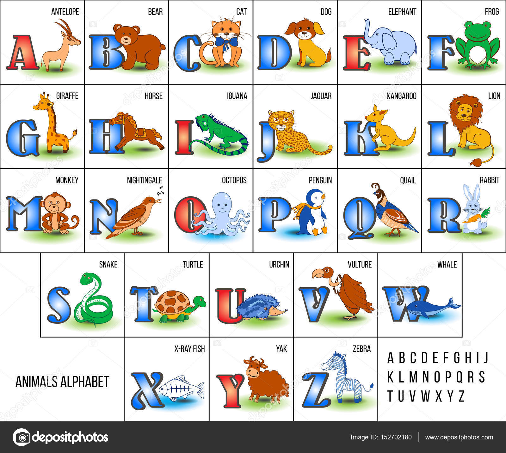 vector alfabeto infantil lindo abecedario zool gico con animales de la historieta de la a la. Black Bedroom Furniture Sets. Home Design Ideas