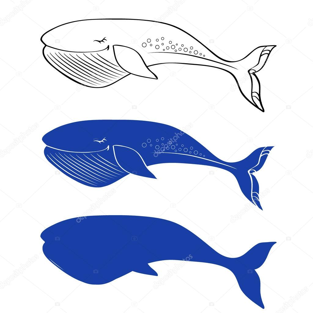 Whale cute cartoon funny illustration isolated on white background, vector graphic colorful doodle animal, Character design for greeting card, children invitation, baby shower, creation of alphabet