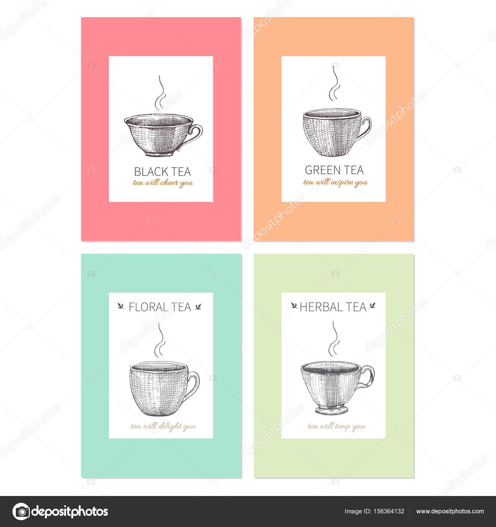 Colección de plantillas para packaging té, café, tazas bosquejadas y ...