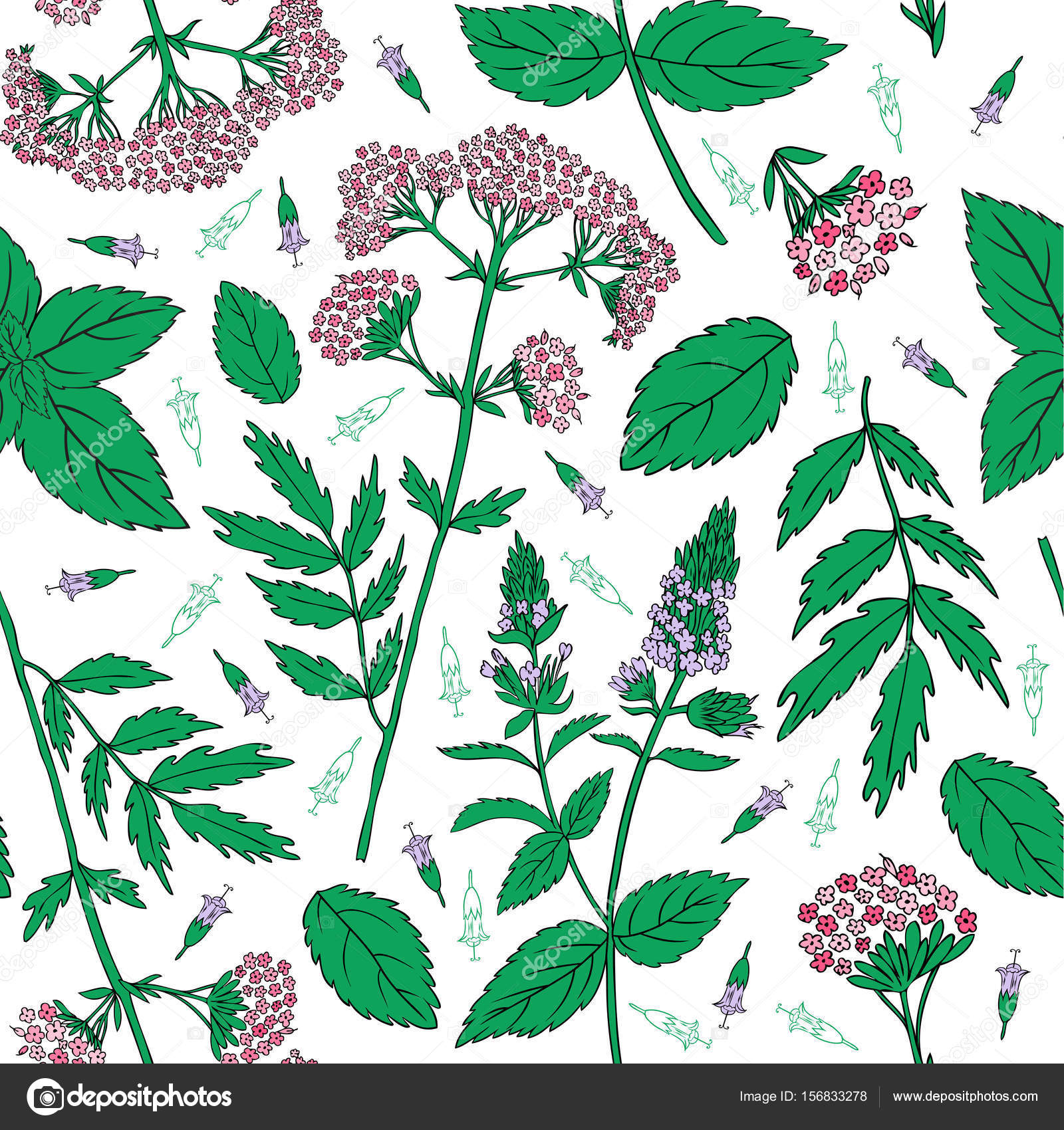 De hojas de menta, brotes de menta piperita, Valeriana officinalis ...