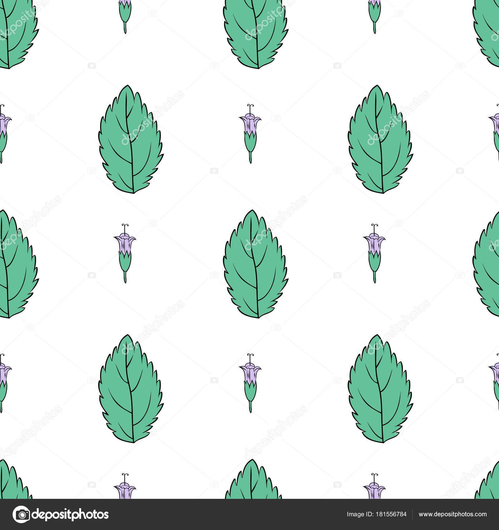 Mano patrón floral vector dibujado, hoja de menta, menta brotes ...