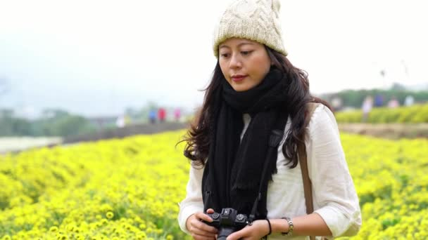 A female traveler taking photos using camera in organic chrysanthemum fields in Vietnam.