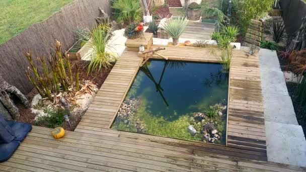 Laghetto da giardino rettangolare video stock bensib for Vasca laghetto rettangolare