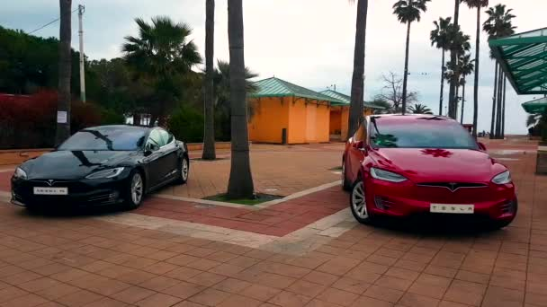 Menton, France - March 3, 2018: - Luxury Black Tesla Model S And Red Tesla Model X Electric Cars Parked on a Square in Menton on The French Riviera - 4K Video