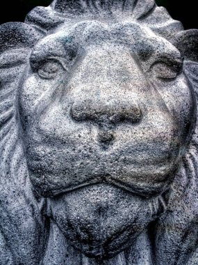 Face of stone lion   - grunge  vintage   photo