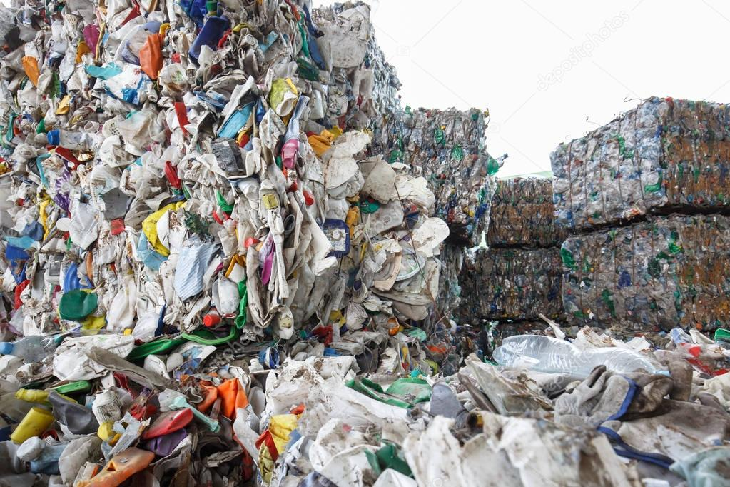 sorting plastic waste Rise of the machines: robot recycling robots have overrun the planet if the system can prove successful in sorting c&d waste.