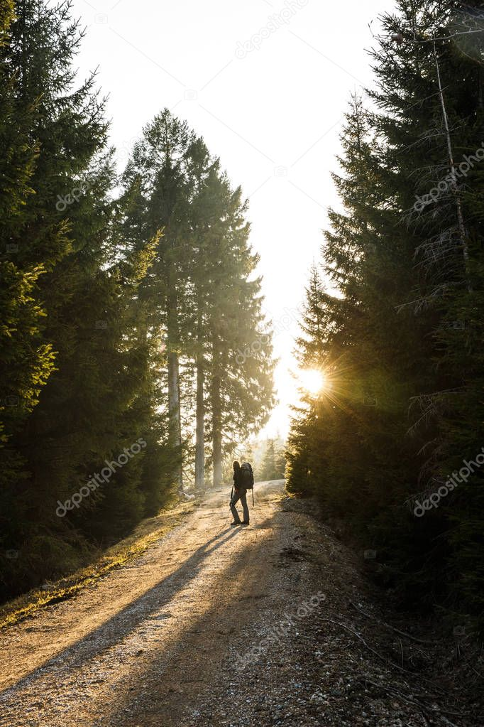 Фотообои Woman hiker standing on a mountain road, sun shining
