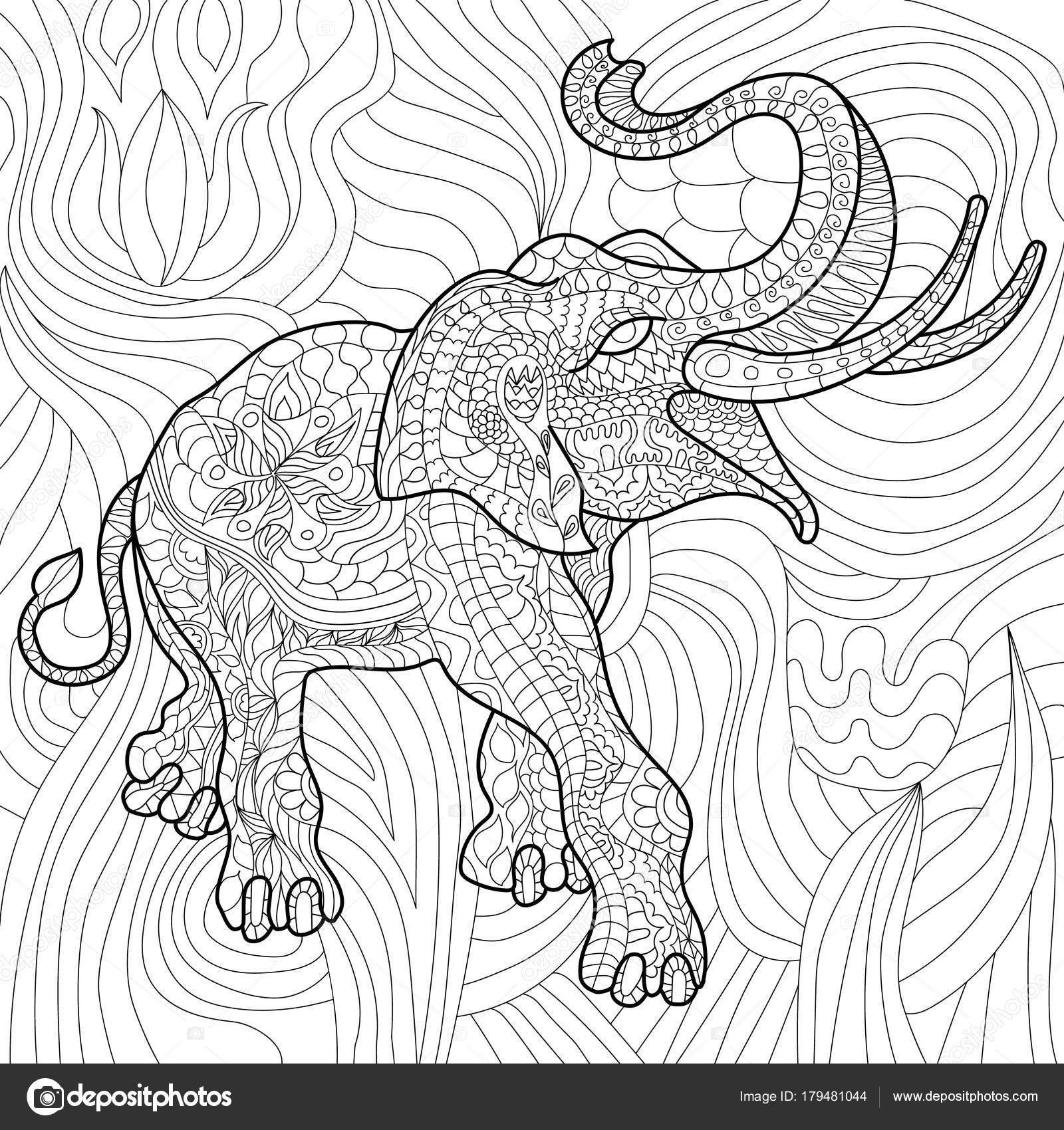 Libro Colorear Stress Elefante Para Adultos Blanco Negro Mano ...