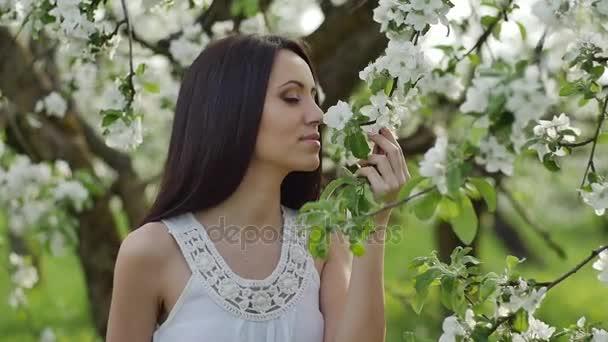 virágzó Alma gyümölcsös