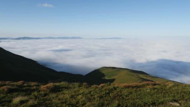 Úžasná krajina v ranní mlze