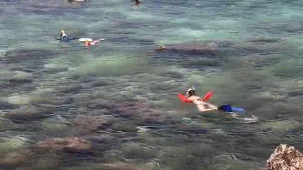 búvárkodás a cápa-öböl
