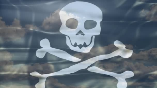 Pirate Sky Flag