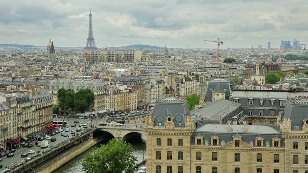 Notre Dame paris skyline view