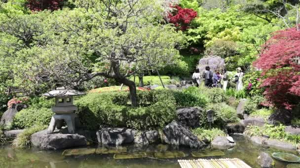 Hase dera zahrada