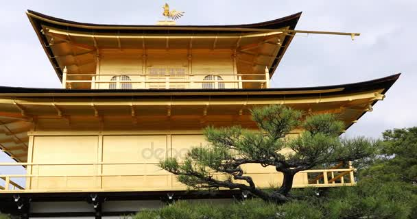 Zlatý pavilon detail