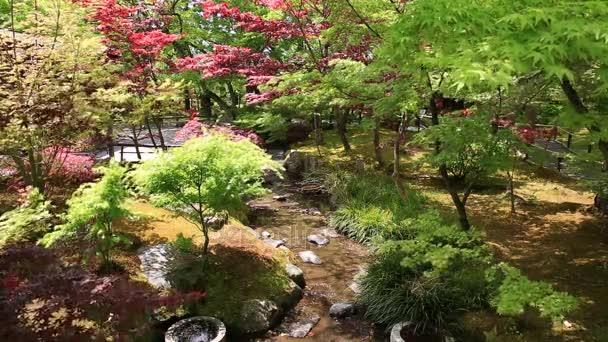 Zen zahrady Kjóto